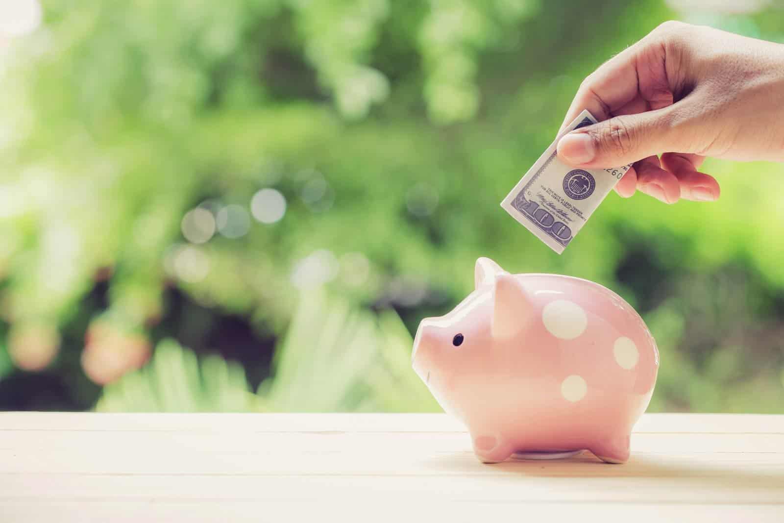 Zaba krediti na ostatak primanja